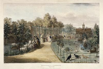 Zoological Gardens, Regent's Park, London, 1835-George Scharf-Giclee Print