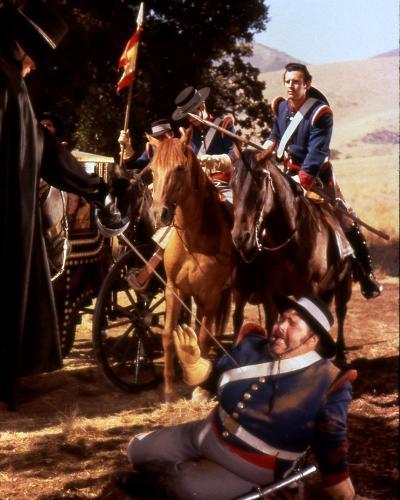 Zorro--Photo